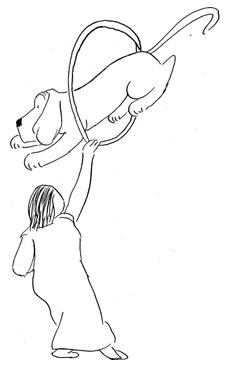 Dog Breeding Puppy Training